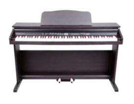 TG-8810数码钢琴